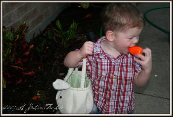 easter-carrots
