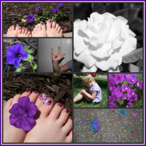 purple-collage1