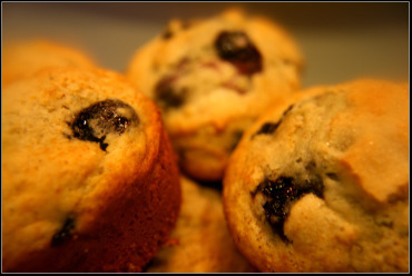 Easy and Delicious Homemade Blueberry Muffins