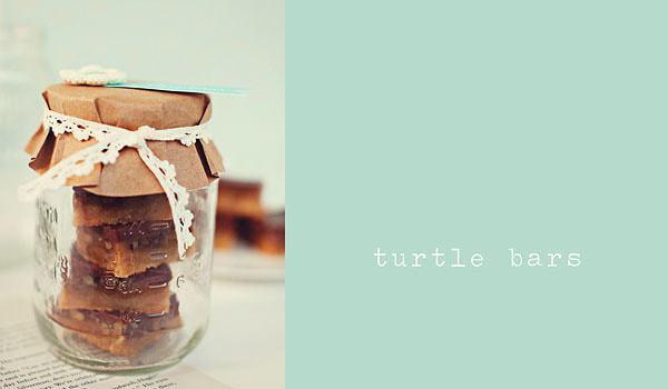 Turtle Bars