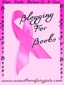Blogging For Boobs