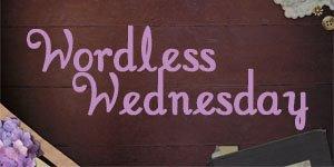 Less than Wordless (Wednesday)