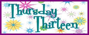 Thoroughly Thrilled Thursday Thirteen