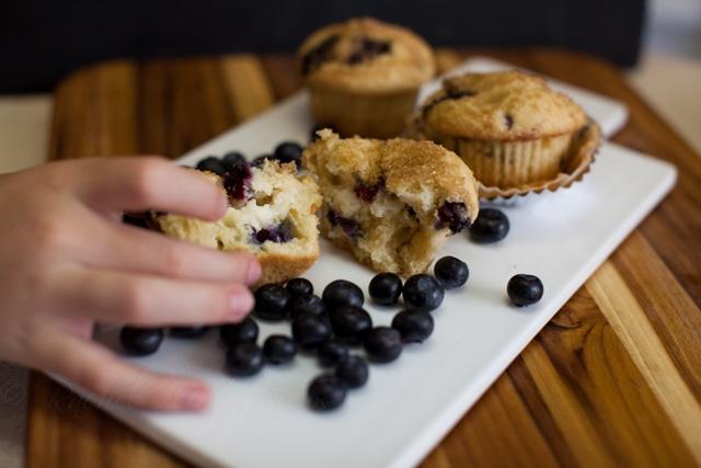 blueberry cheesecake muffin thief