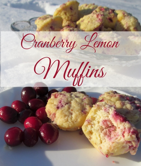 grain free, sugar free Cranberry Lemon Muffins
