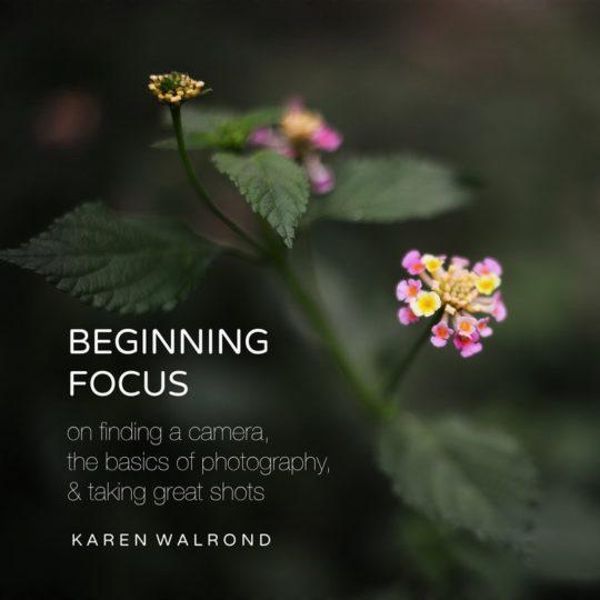 Beginning Focus: a Photography e-book by Karen Walrond