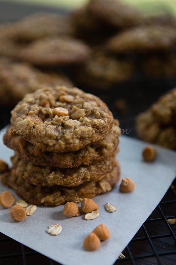 Southern Oatmeal Scotchies Cookies