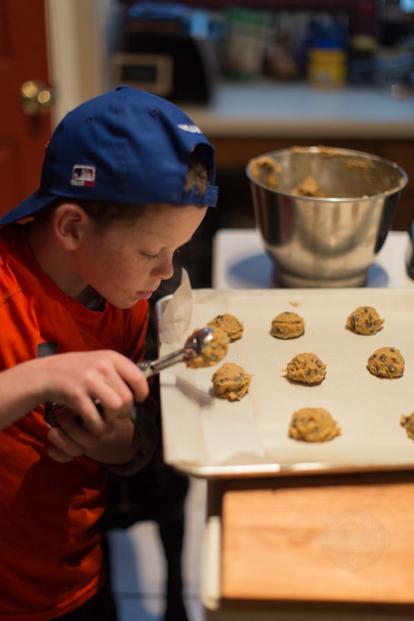 Monkey using the OXO medium cookie scoop to portion chocolate chip cookies