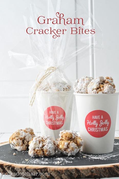Graham Cracker Bites